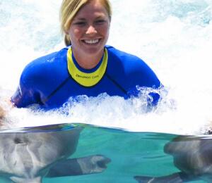 Dolphin Swims