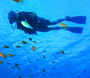 Scuba Diving - Non-Certified
