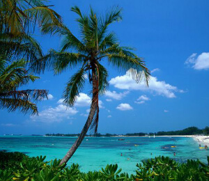 Puerto Vallarta Top 10 Things To Do